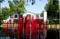 Alex-Camp-House-through-Red-Reeds